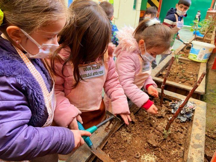 """Bilişim Teknolojileri """"Çimlenen Gazete"""" Eko-Okul Projesi"""